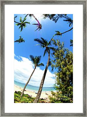 Framed Print featuring the photograph Beautiful Palms Of Maui 17 by Micah May