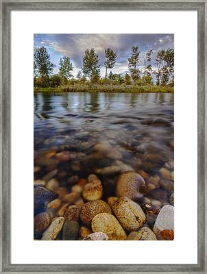 Beautiful Pebbles In Boise River Idaho Framed Print by Vishwanath Bhat