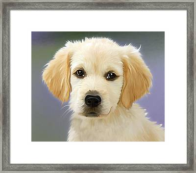 Beautiful Puppy Framed Print