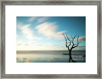 Beautiful Remnants Framed Print by Nando Lardi