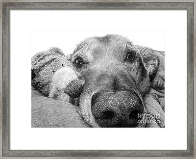 Beautiful Snoot Framed Print