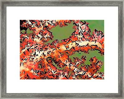 Beautiful Soft Cora 1 Framed Print by Lanjee Chee