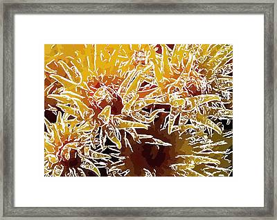 Beautiful Soft Coral Flowers Underwater 1 Framed Print by Lanjee Chee