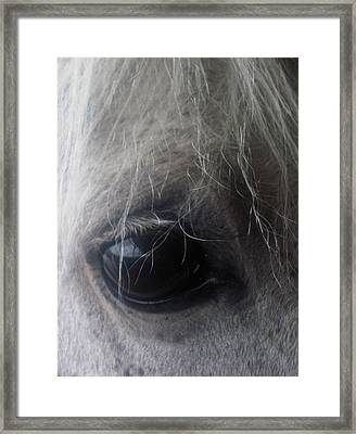 Beautiful Spirit Framed Print