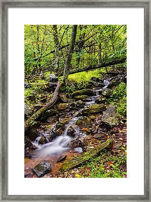 Beautiful Stream In Shenandoah National Park In Virginia Framed Print