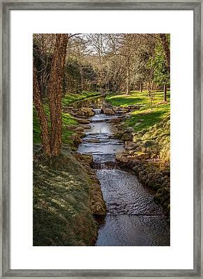 Beautiful Stream Framed Print