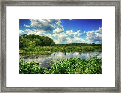 Beautiful Sunny Summer Day Framed Print by Lilia D