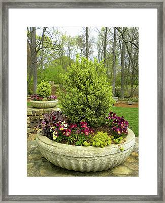 Beautiful Welcome Framed Print by Sandi OReilly