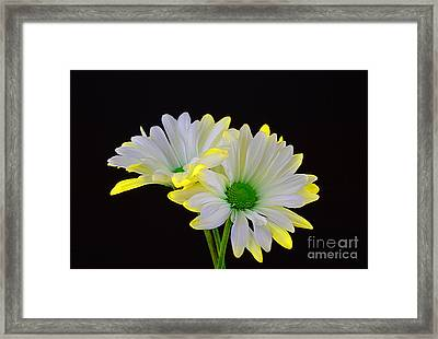 Beautiful Wonder Framed Print