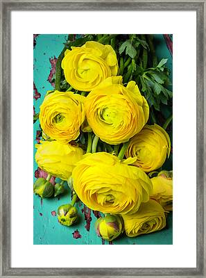 Beautiful Yellow Ranunculus Framed Print