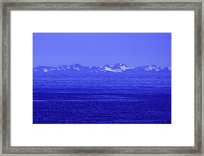 Beautifully Blue Framed Print by Michael Nowotny