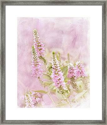 Framed Print featuring the photograph Beautilicious by Betty LaRue