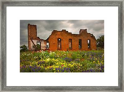 Beauty And Ashes Framed Print by Jon Holiday