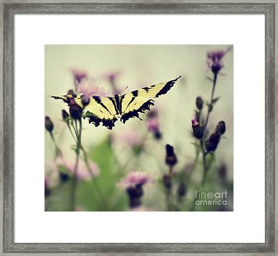 Framed Print featuring the photograph Beauty And Grace  by Kerri Farley