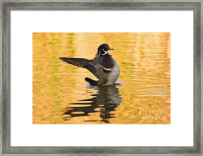 Beauty And Light 40x60 Inches   Framed Print