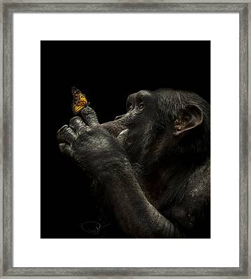 Beauty And The Beast Framed Print by Paul Neville