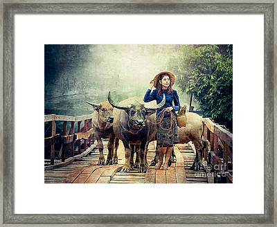 Beauty And The Water Buffalo Framed Print