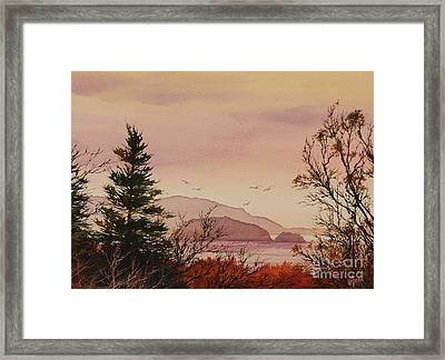 Beauty At The Shore Framed Print by James Williamson