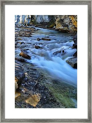 Beauty Creek Framed Print by Larry Ricker
