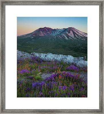 Beauty From Ashes Framed Print