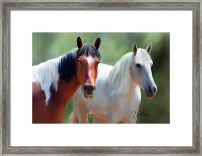 Beauty In Colorado  Framed Print by Colleen Taylor