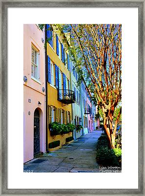 Beauty In Colors Framed Print