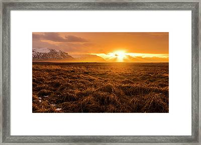 Framed Print featuring the photograph Beauty In Nature by Pradeep Raja Prints