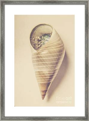 Beauty In Oceanic Symmetry Framed Print