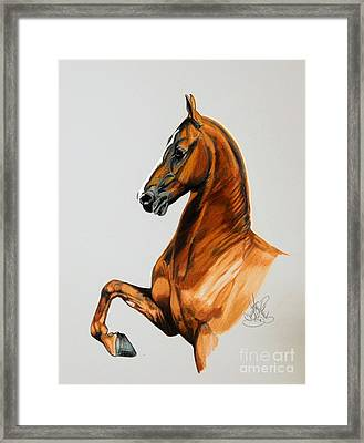 Sirtainly Stylish  - Saddlebred Framed Print