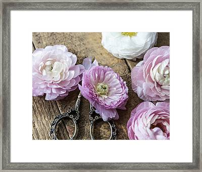 Framed Print featuring the photograph Beauty In Simplicity by Kim Hojnacki
