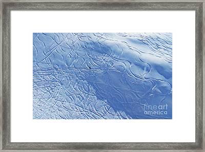 Beauty In Solitude Framed Print