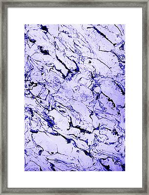 Beauty In Texture Framed Print