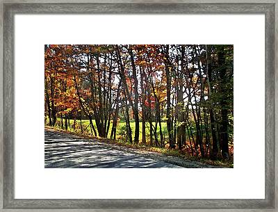 Beauty In The Dappled Light Framed Print by Joy Nichols