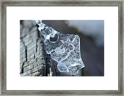Beauty In The Details Framed Print by Cendrine Marrouat