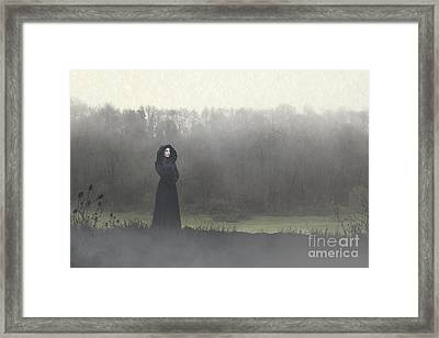 Beauty In The Fog Framed Print
