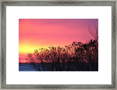Beauty In The Morning Framed Print by Christy Patino