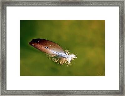 Beauty In The Simple Things Framed Print