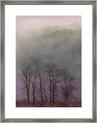 Framed Print featuring the photograph Beauty In The Wind by Angie Vogel