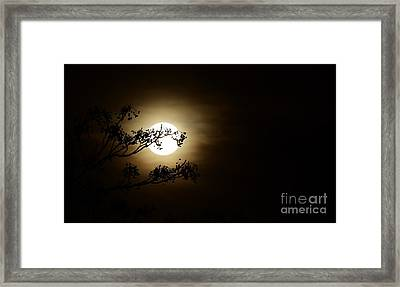 Beauty Is Life Framed Print