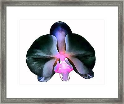 Beauty Is Unique Framed Print by Krissy Katsimbras