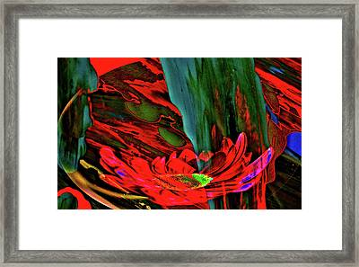 Beauty Of A Flower Abstract Framed Print by Jeff Swan