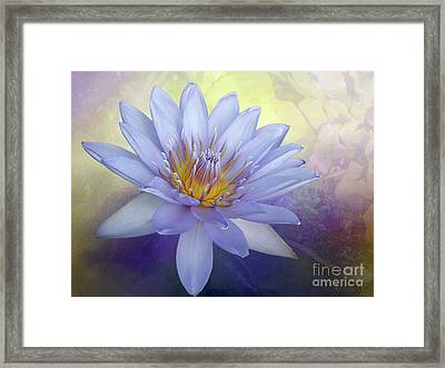 Beauty Of A Waterlily By Kaye Menner Framed Print
