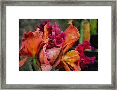 Framed Print featuring the mixed media Beauty Of An Orchid by Trish Tritz