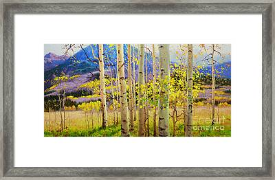Beauty Of Aspen Colorado Framed Print