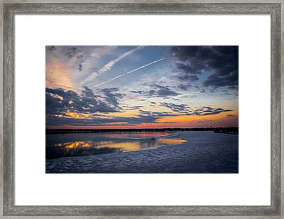 Beauty Of Patience Framed Print