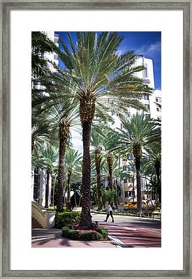 Beauty Of South Beach Framed Print by Karen Wiles