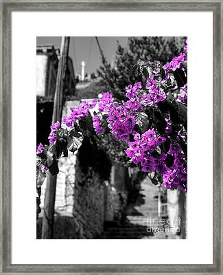 Beauty On The Up Framed Print