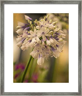 Framed Print featuring the photograph Beauty Tower by Julie Andel