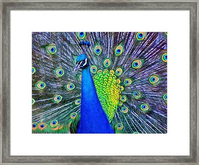 Beauty Whatever The Name Framed Print