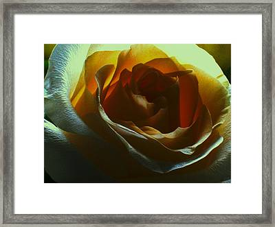 Beauty Within Framed Print by Erika Lesnjak-Wenzel